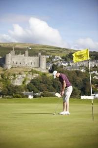 Cwrs Golff St Davids