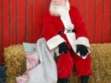 Festive Snowdonia: Ten Christmas Events For2011